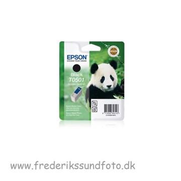 Epson T0501 Sort