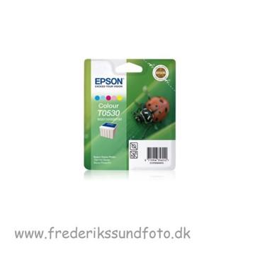 Epson T0530 Color